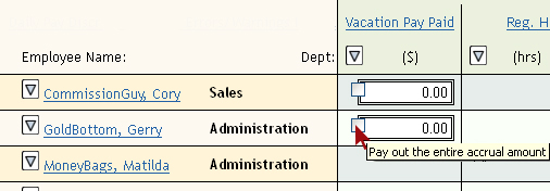 Screen shot of Vacation Pay Paid on Input Sheet
